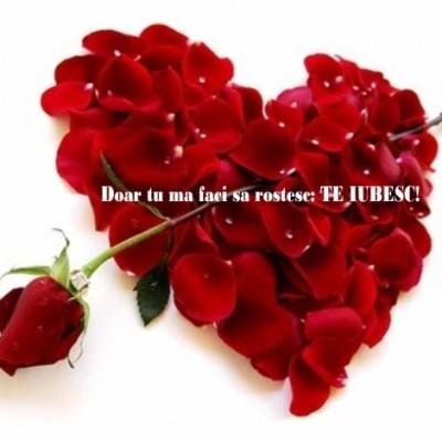 felicitari de sf valentin_poze_03