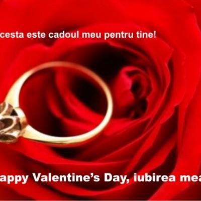 felicitari de sf valentin_poze_08