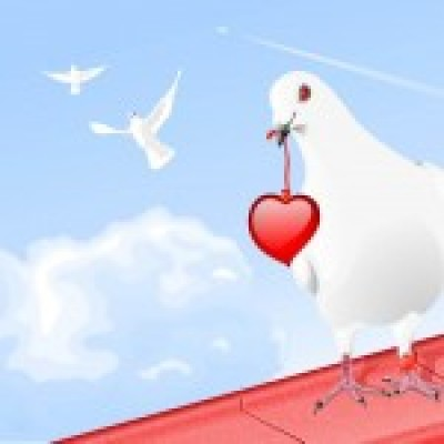 porumbelul dragostei