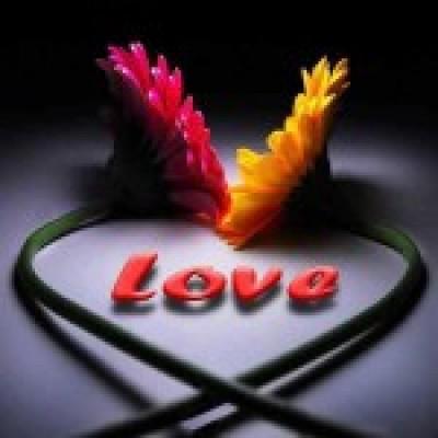 poza cu love