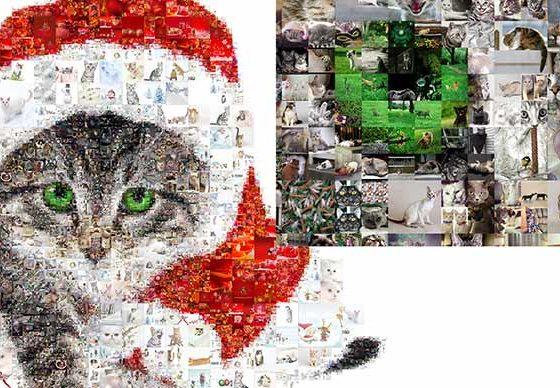 Colaj foto -14 cele mai bune programe de facut colaj de poze online