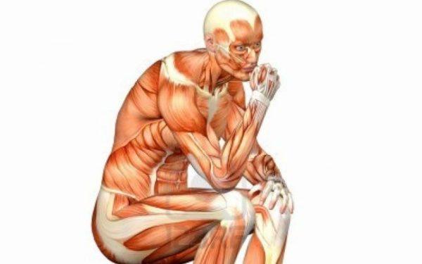 Curiozitati despre corpul uman, pe care, sigur, nu le stii ...